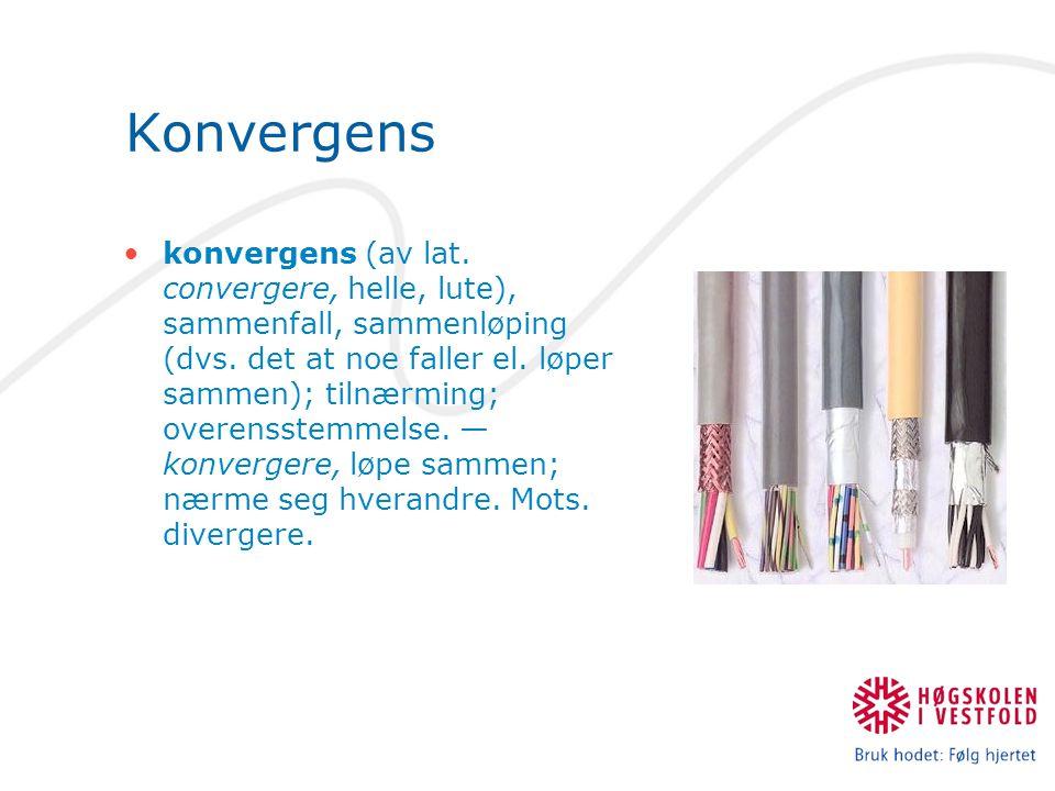 Konvergens konvergens (av lat. convergere, helle, lute), sammenfall, sammenløping (dvs. det at noe faller el. løper sammen); tilnærming; overensstemme