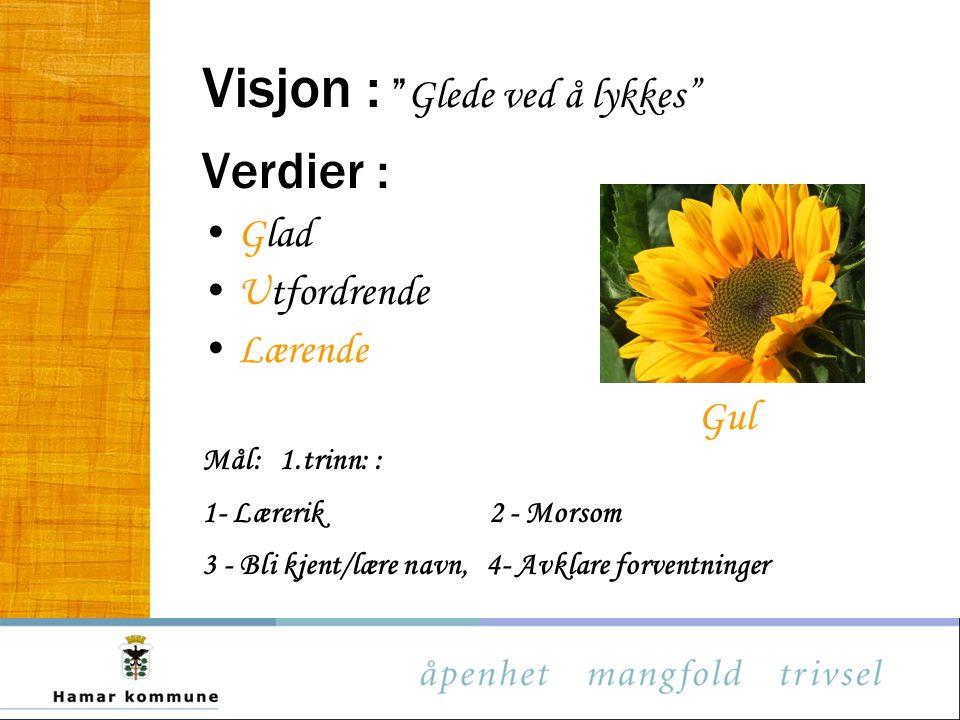 Visjon : Glede ved å lykkes Verdier : Glad Utfordrende Lærende Gul Mål: 1.trinn: : 1- Lærerik 2 - Morsom 3 - Bli kjent/lære navn, 4- Avklare forventninger