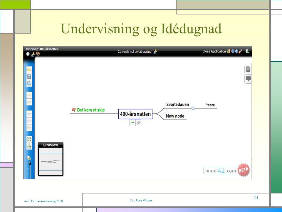 Avd. For lærerutdanning 2008 Tor Arne Wølner 24 Undervisning og Idédugnad