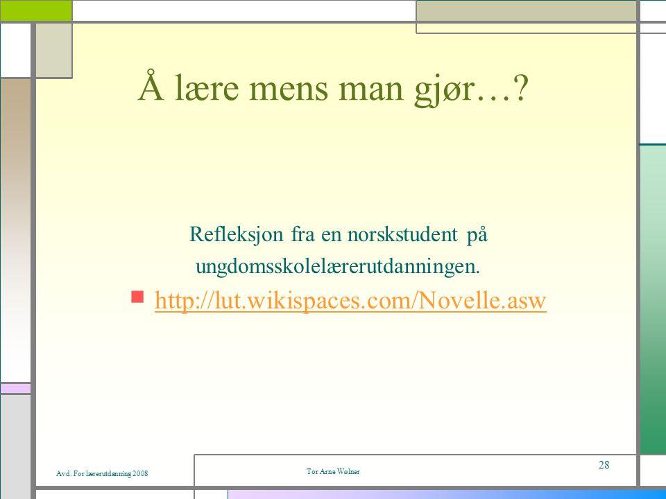 Avd.For lærerutdanning 2008 Tor Arne Wølner 28 Å lære mens man gjør….