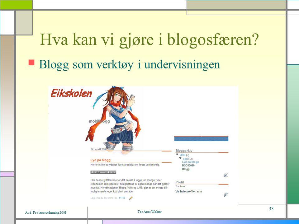 Avd. For lærerutdanning 2008 Tor Arne Wølner 33 Hva kan vi gjøre i blogosfæren.