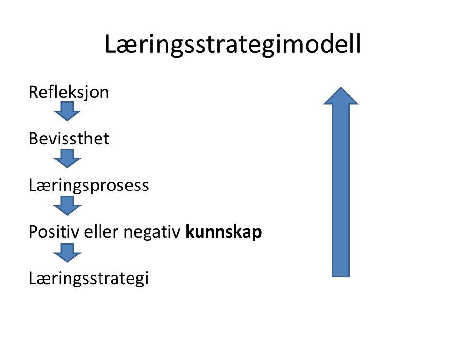 Læringsstrategimodell Refleksjon Bevissthet Læringsprosess Positiv eller negativ kunnskap Læringsstrategi
