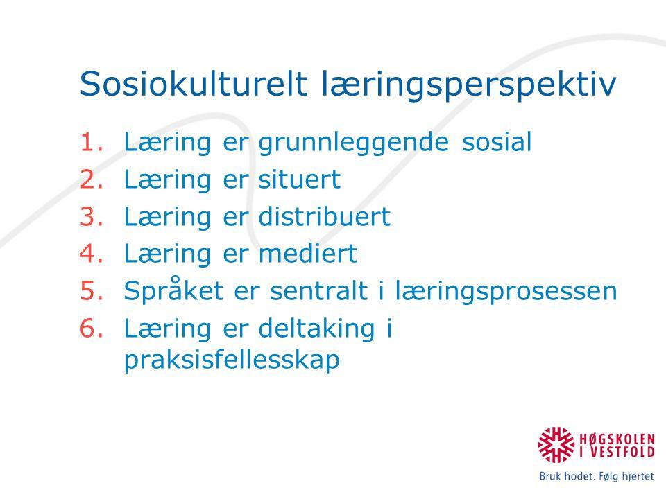 Sosiokulturelt læringsperspektiv 1.Læring er grunnleggende sosial 2.Læring er situert 3.Læring er distribuert 4.Læring er mediert 5.Språket er sentralt i læringsprosessen 6.Læring er deltaking i praksisfellesskap