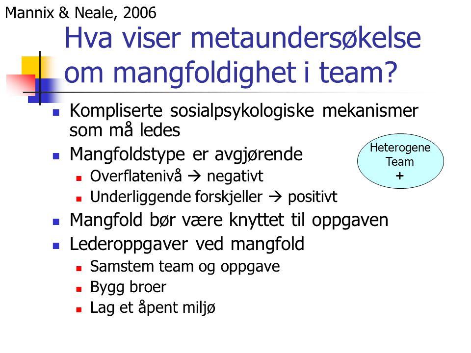 Hva viser metaundersøkelse om mangfoldighet i team.