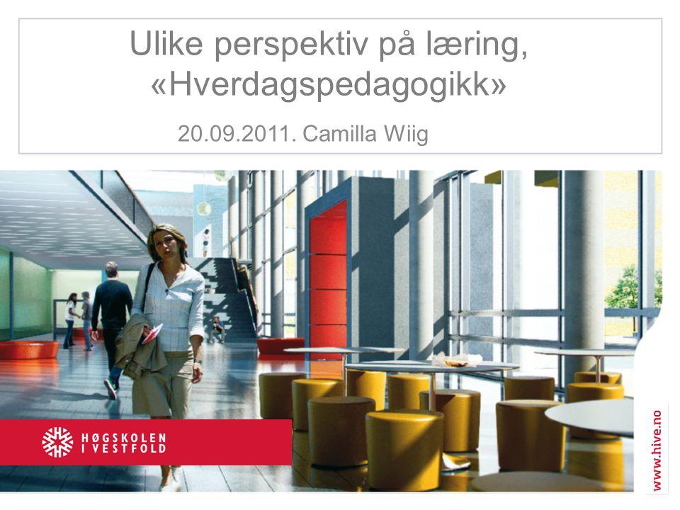 Ulike perspektiv på læring, «Hverdagspedagogikk» 20.09.2011. Camilla Wiig