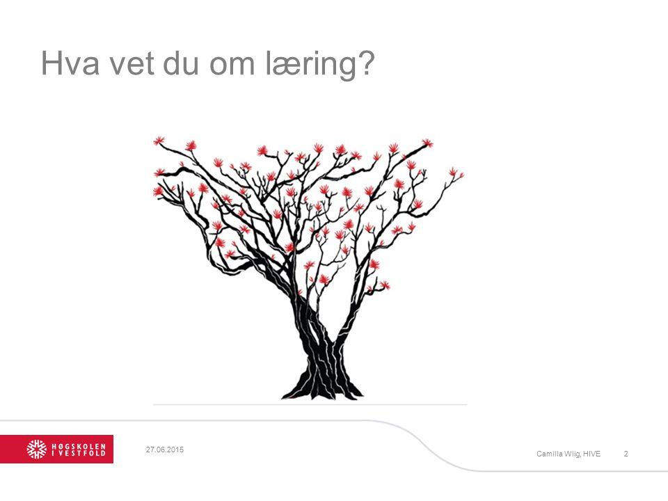 Hva vet du om læring? 27.06.2015 Camilla Wiig, HIVE2