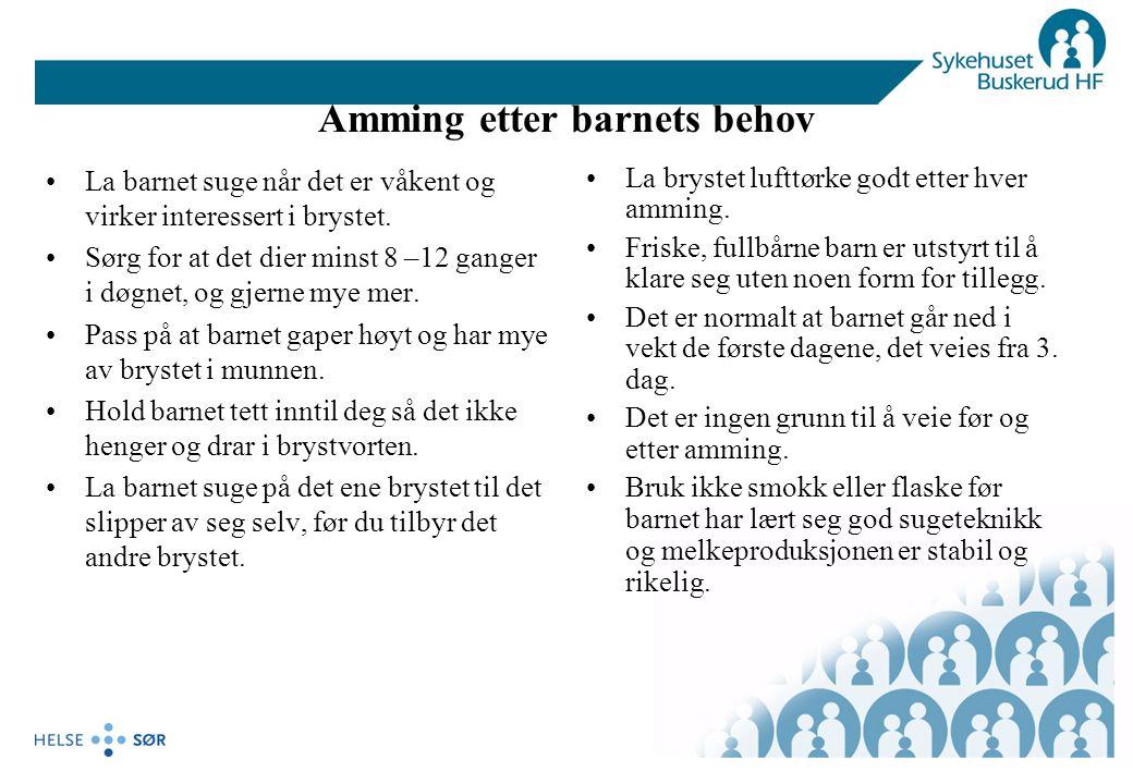 Litteraturliste/Henvisninger Ammeveiledningskurs trinn 1-4 i Bodø 2002/2003 v/overlege dr, med.
