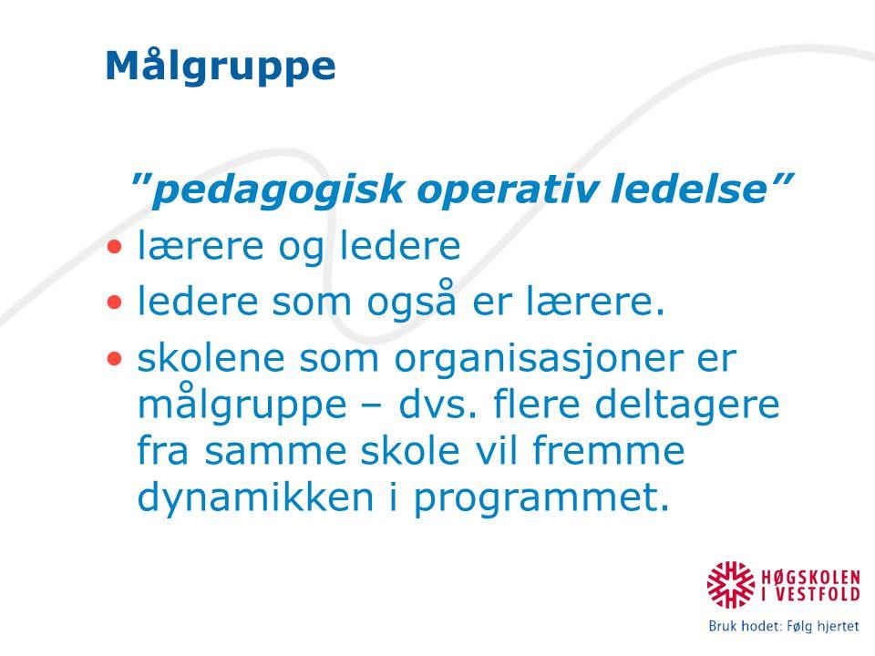 Målgruppe pedagogisk operativ ledelse lærere og ledere ledere som også er lærere.