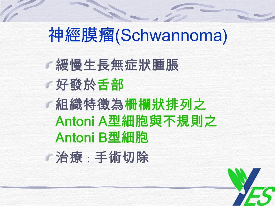 神經膜瘤 (Schwannoma) 緩慢生長無症狀腫脹 好發於舌部 組織特徵為柵欄狀排列之 Antoni A 型細胞與不規則之 Antoni B 型細胞 治療 : 手術切除