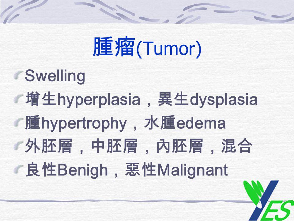 腫瘤 (Tumor) Swelling 增生 hyperplasia ,異生 dysplasia 腫 hypertrophy ,水腫 edema 外胚層,中胚層,內胚層,混合 良性 Benigh ,惡性 Malignant