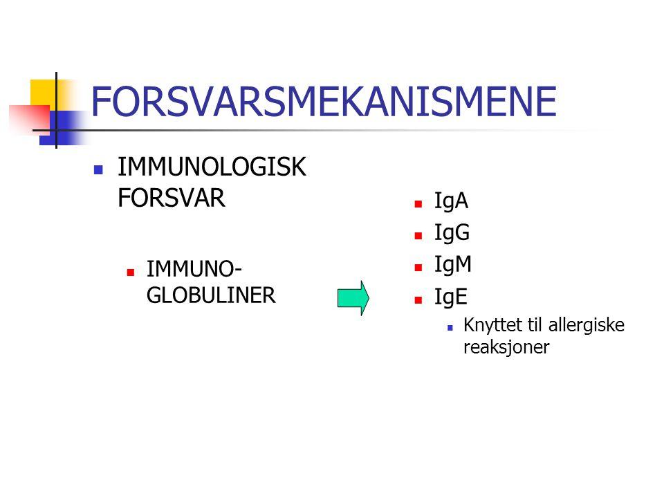 FORSVARSMEKANISMENE IMMUNOLOGISK FORSVAR IMMUNO- GLOBULINER IgA IgG IgM IgE Knyttet til allergiske reaksjoner