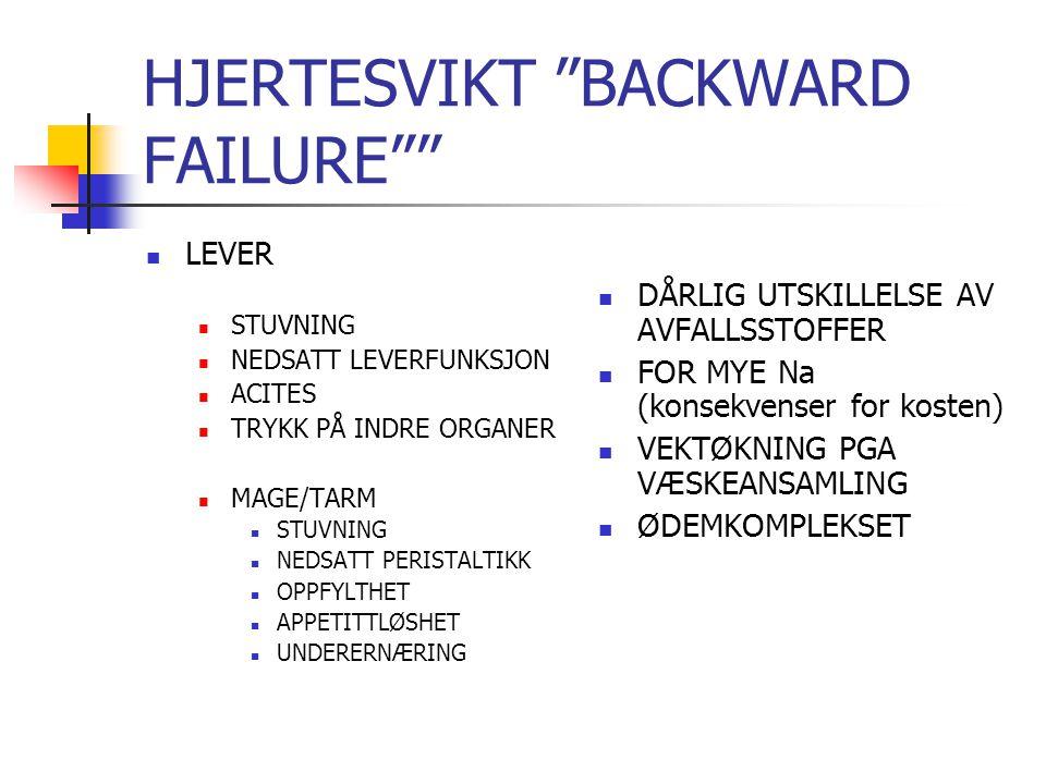 HJERTESVIKT BACKWARD FAILURE LEVER STUVNING NEDSATT LEVERFUNKSJON ACITES TRYKK PÅ INDRE ORGANER MAGE/TARM STUVNING NEDSATT PERISTALTIKK OPPFYLTHET APPETITTLØSHET UNDERERNÆRING DÅRLIG UTSKILLELSE AV AVFALLSSTOFFER FOR MYE Na (konsekvenser for kosten) VEKTØKNING PGA VÆSKEANSAMLING ØDEMKOMPLEKSET