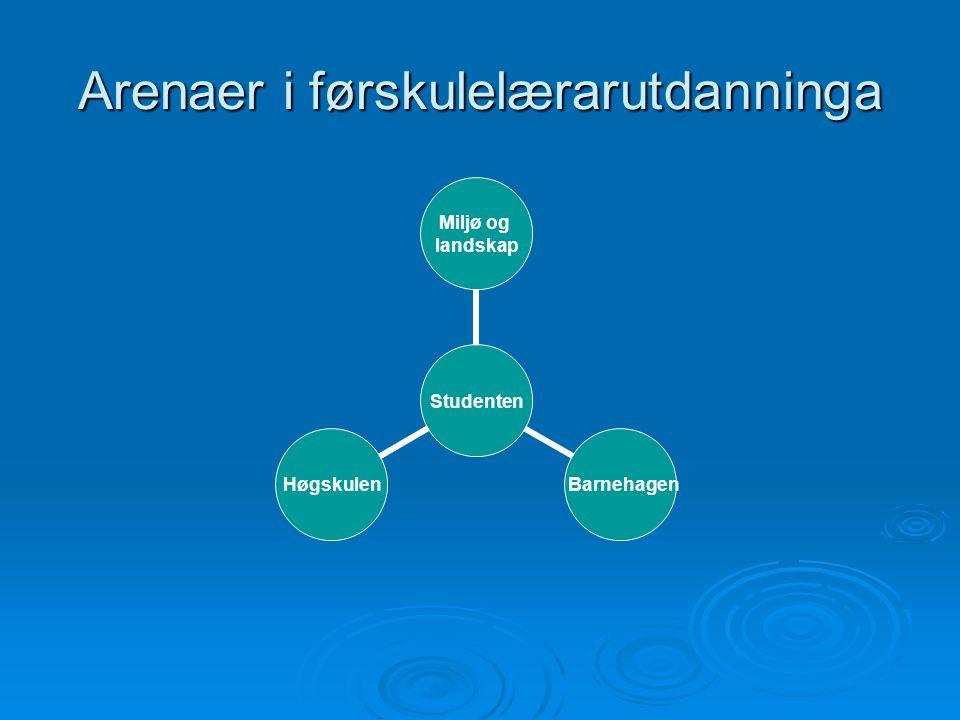 Modell for kultursamspel Fag- og pedstudium Fysisk kultursti Virtuell kultursti Samfunn og kultur