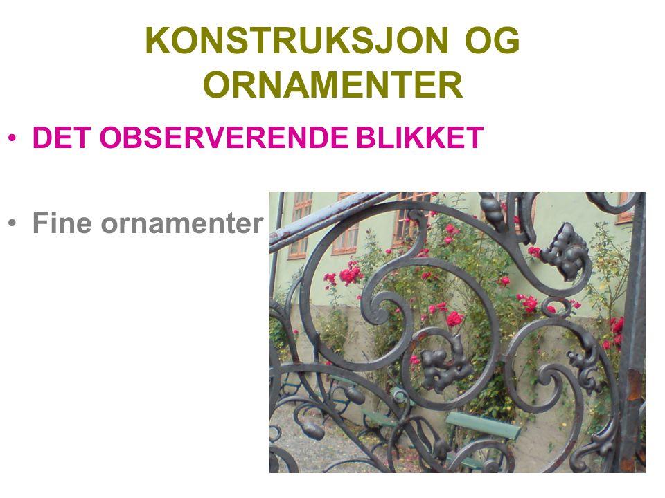 KONSTRUKSJON OG ORNAMENTER DET OBSERVERENDE BLIKKET Fine ornamenter