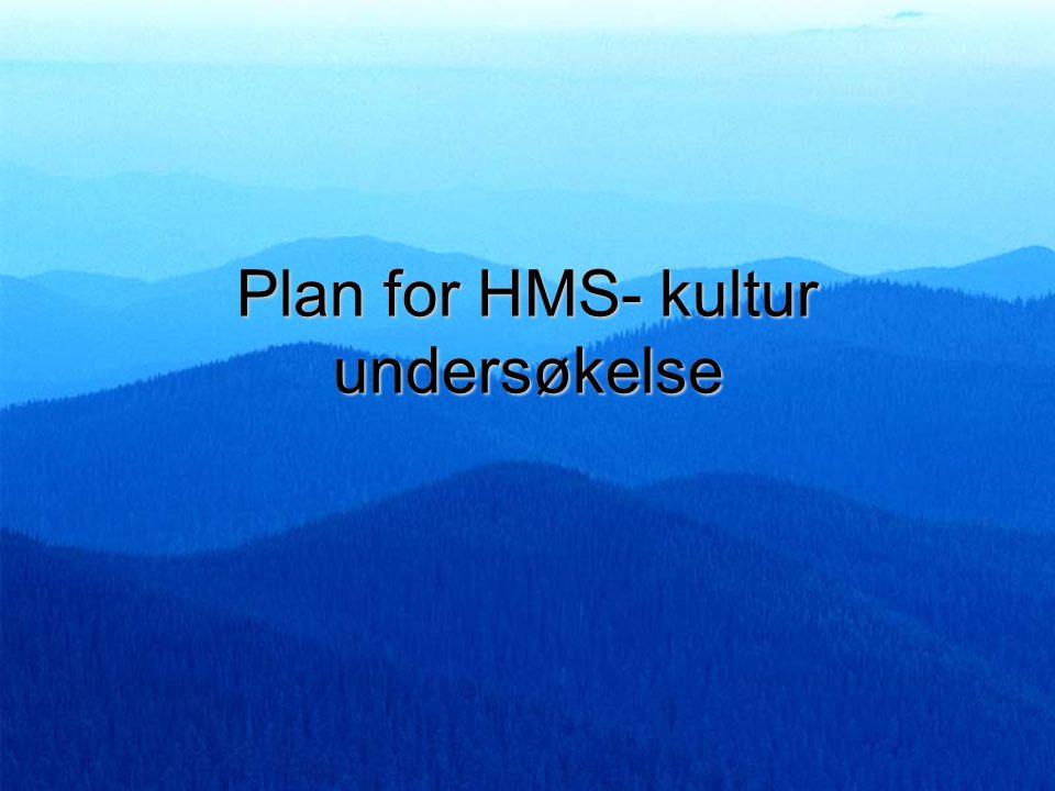Plan for HMS- kultur undersøkelse