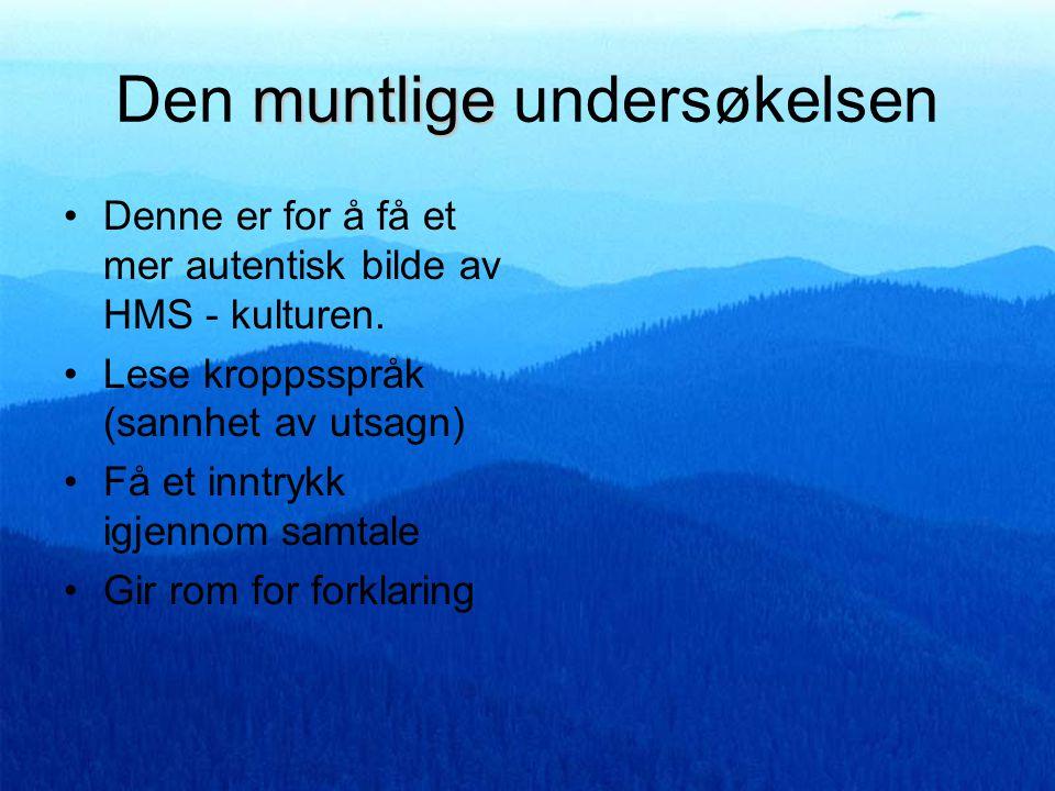 spørreskjema Muntlig spørreskjema Trives du på arbeidsplassen (arbeidspress og sosialt).