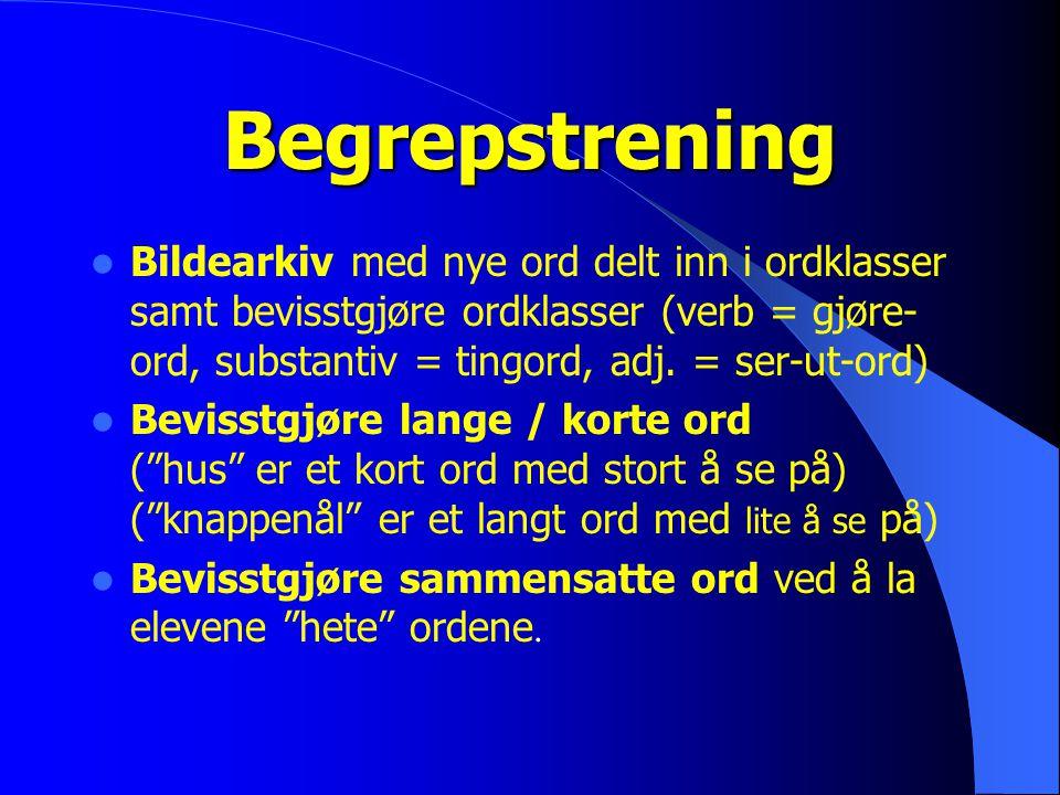 Begrepstrening Bildearkiv med nye ord delt inn i ordklasser samt bevisstgjøre ordklasser (verb = gjøre- ord, substantiv = tingord, adj. = ser-ut-ord)