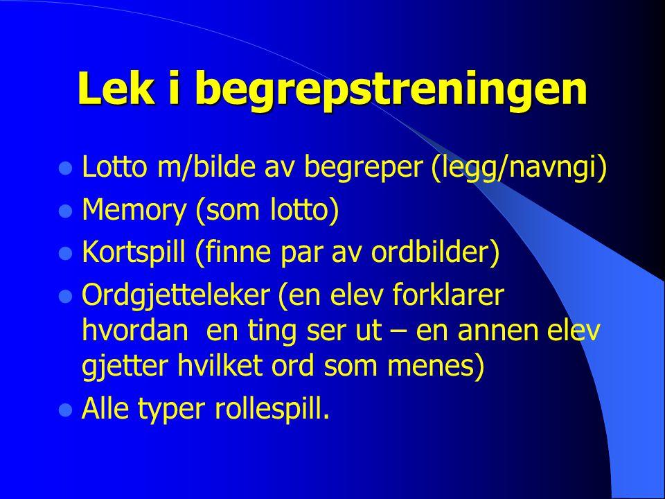 Lek i begrepstreningen Lotto m/bilde av begreper (legg/navngi) Memory (som lotto) Kortspill (finne par av ordbilder) Ordgjetteleker (en elev forklarer