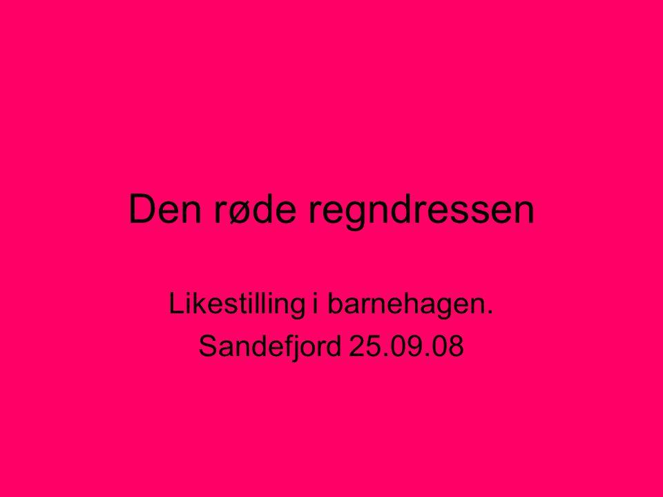 Den røde regndressen Likestilling i barnehagen. Sandefjord 25.09.08