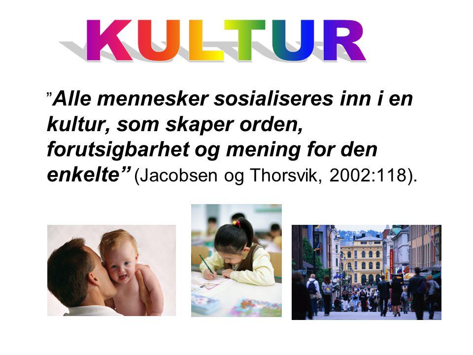 Alle mennesker sosialiseres inn i en kultur, som skaper orden, forutsigbarhet og mening for den enkelte (Jacobsen og Thorsvik, 2002:118).