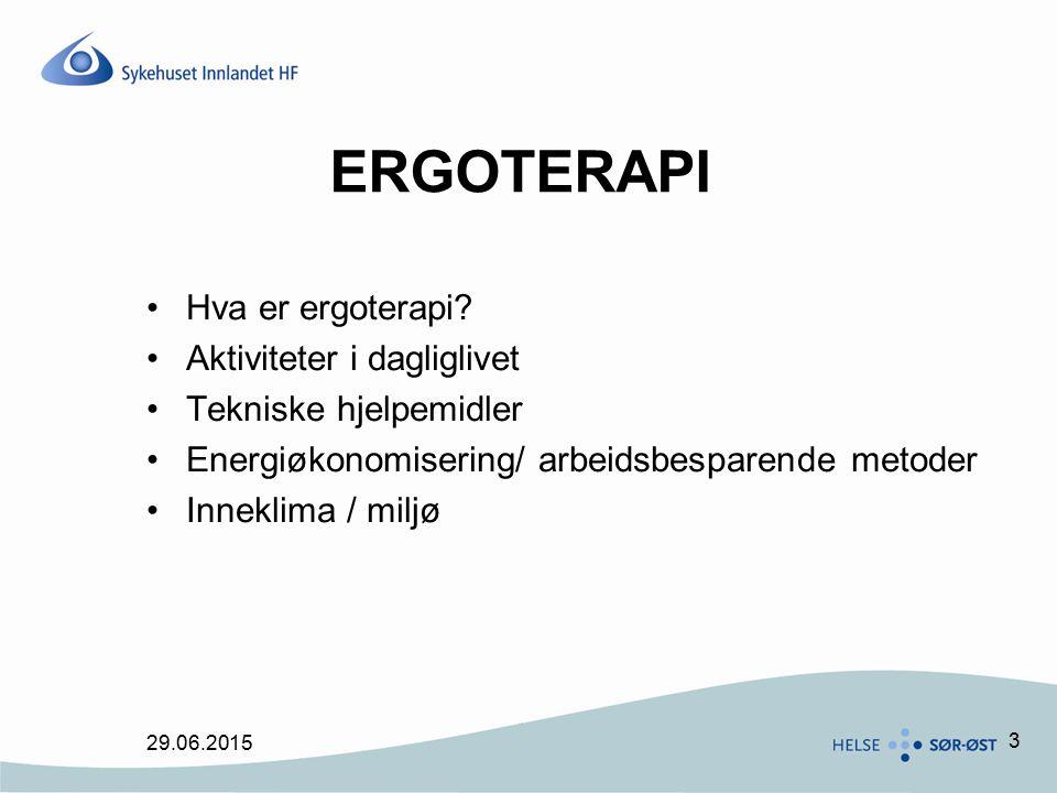 3 ERGOTERAPI Hva er ergoterapi? Aktiviteter i dagliglivet Tekniske hjelpemidler Energiøkonomisering/ arbeidsbesparende metoder Inneklima / miljø 29.06