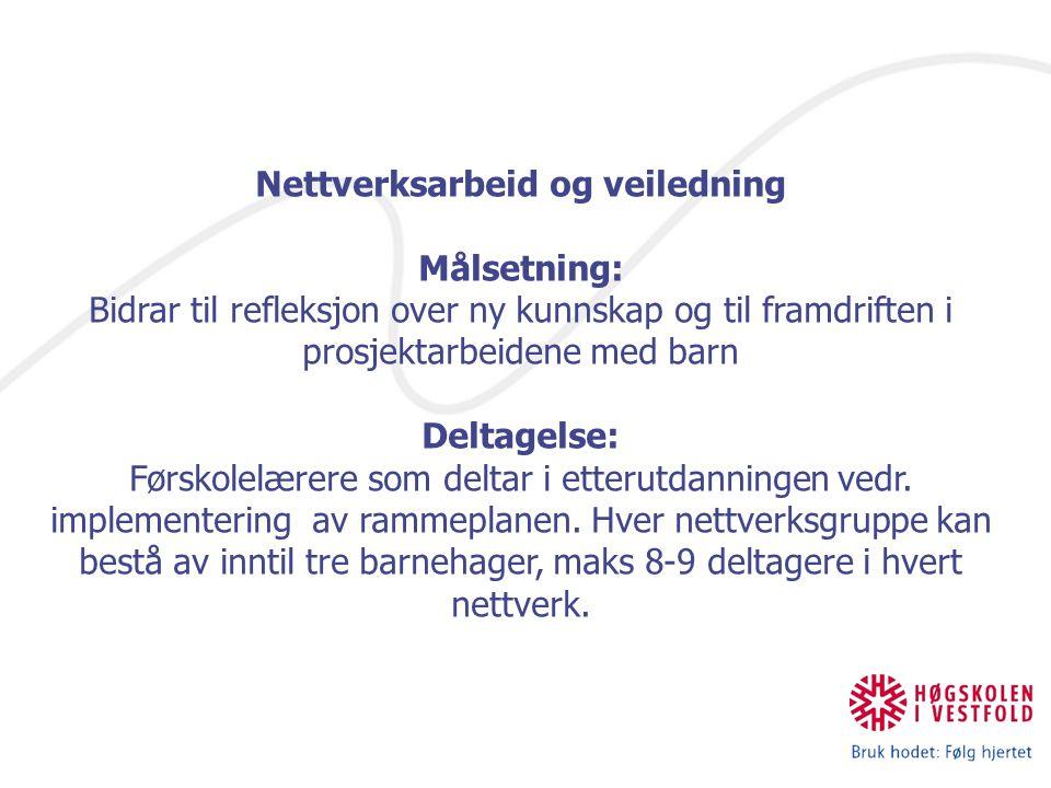 Nettverksarbeid og veiledning Målsetning: Bidrar til refleksjon over ny kunnskap og til framdriften i prosjektarbeidene med barn Deltagelse: Førskolel