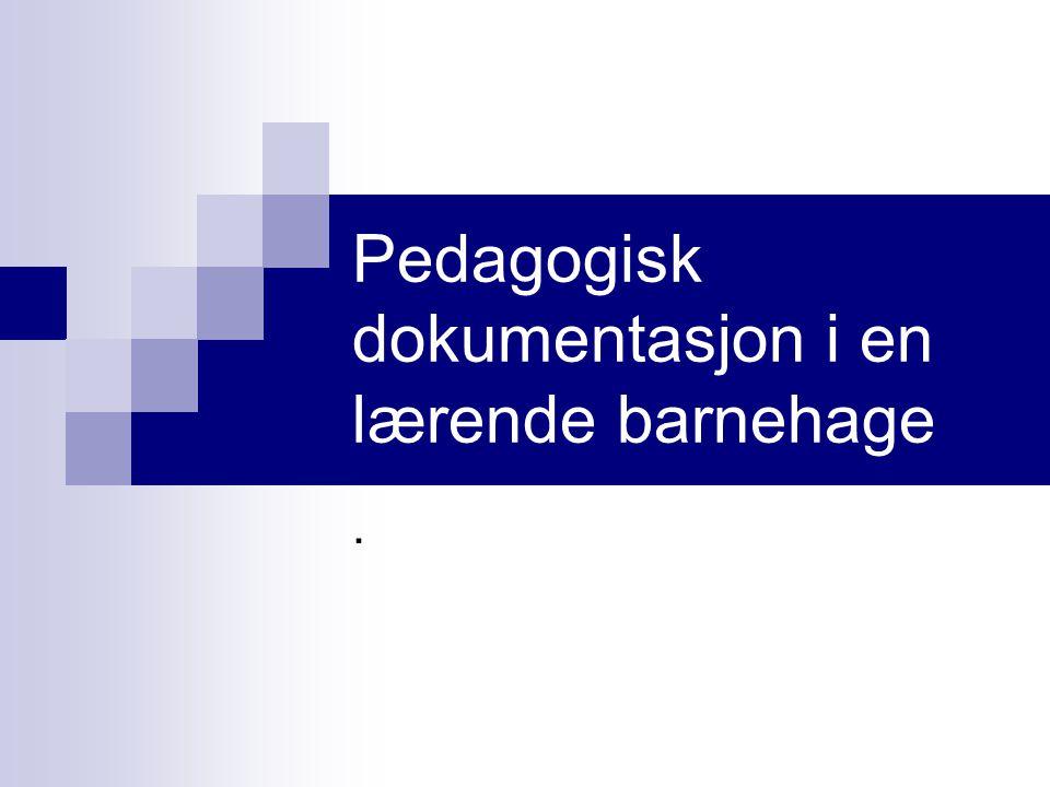 Pedagogisk dokumentasjon i en lærende barnehage.
