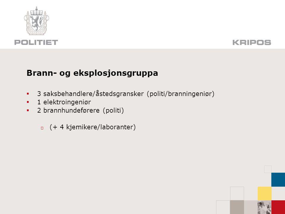 Målet for etterforskningen  Arnested  Brannårsak  Hendelsesforløp  Straffbar handling, teknisk eller menneskelig feil.