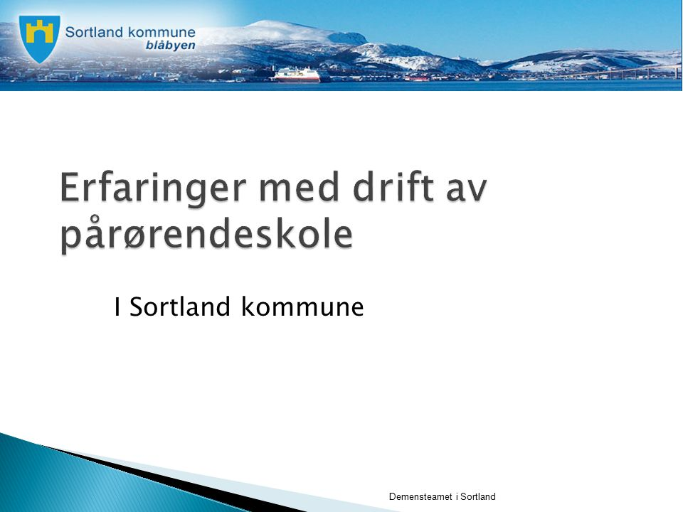 Demensteamet i Sortland I Sortland kommune