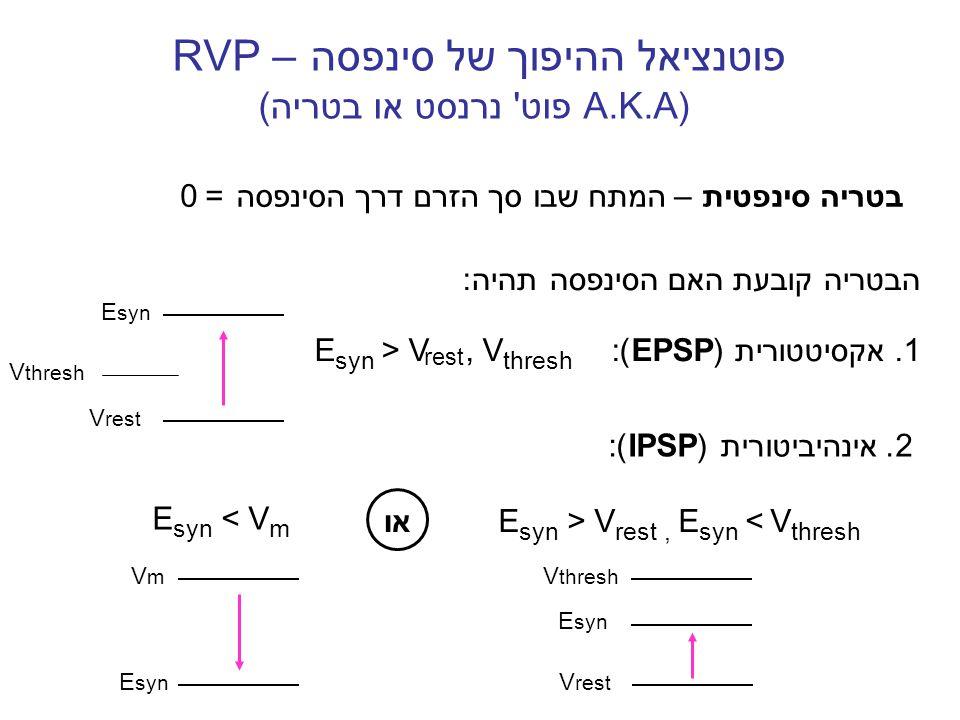 הבטריה קובעת האם הסינפסה תהיה: 1.אקסיטטורית (EPSP) : E syn > V, V thresh פוטנציאל ההיפוך של סינפסה RVP – (A.K.A פוט' נרנסט או בטריה) E syn V rest E sy