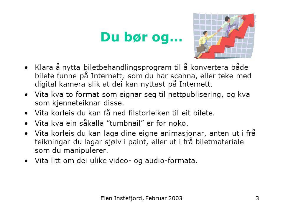 Elen Instefjord, Februar 20033 Du bør og… Klara å nytta biletbehandlingsprogram til å konvertera både bilete funne på Internett, som du har scanna, eller teke med digital kamera slik at dei kan nyttast på Internett.