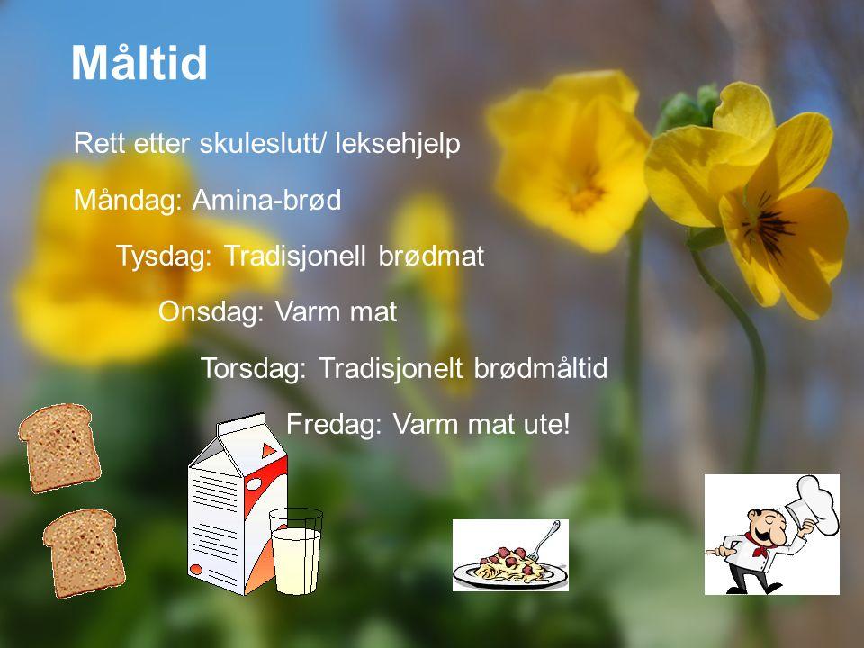 Måltid Rett etter skuleslutt/ leksehjelp Måndag: Amina-brød Tysdag: Tradisjonell brødmat Onsdag: Varm mat Torsdag: Tradisjonelt brødmåltid Fredag: Var