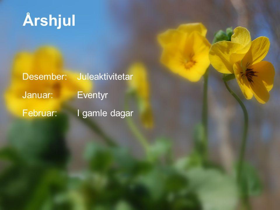 Desember:Juleaktivitetar Januar:Eventyr Februar:I gamle dagar Årshjul