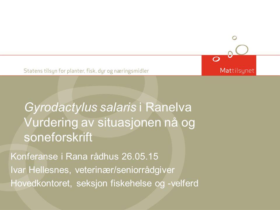 Gyrodactylus salaris i Ranelva Vurdering av situasjonen nå og soneforskrift Konferanse i Rana rådhus 26.05.15 Ivar Hellesnes, veterinær/seniorrådgiver Hovedkontoret, seksjon fiskehelse og -velferd