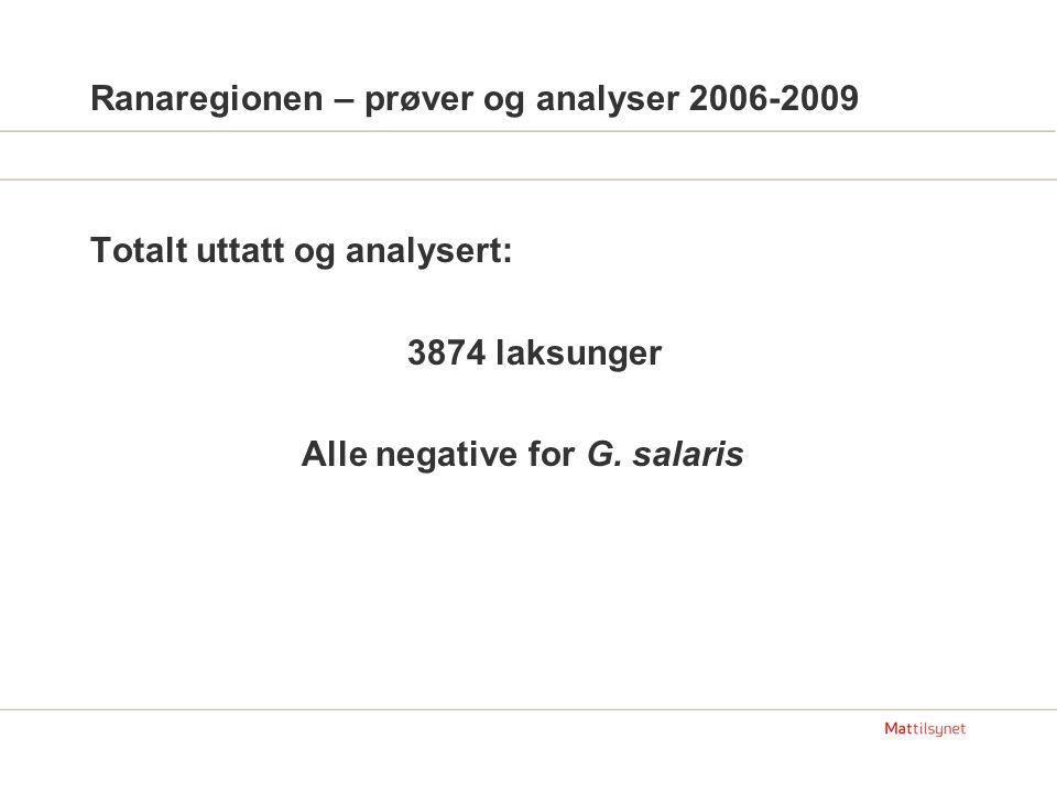 Ranaregionen – prøver og analyser 2006-2009 Totalt uttatt og analysert: 3874 laksunger Alle negative for G.