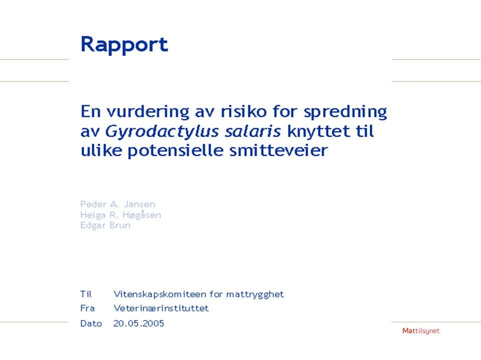 Epidemiologisk kartlegging høsten 2014 ( det følgende er basert på utkast til rapport fra Veterinærinstituttet etter bestilling fra Mattilsynet) Totalt 382 laksunger