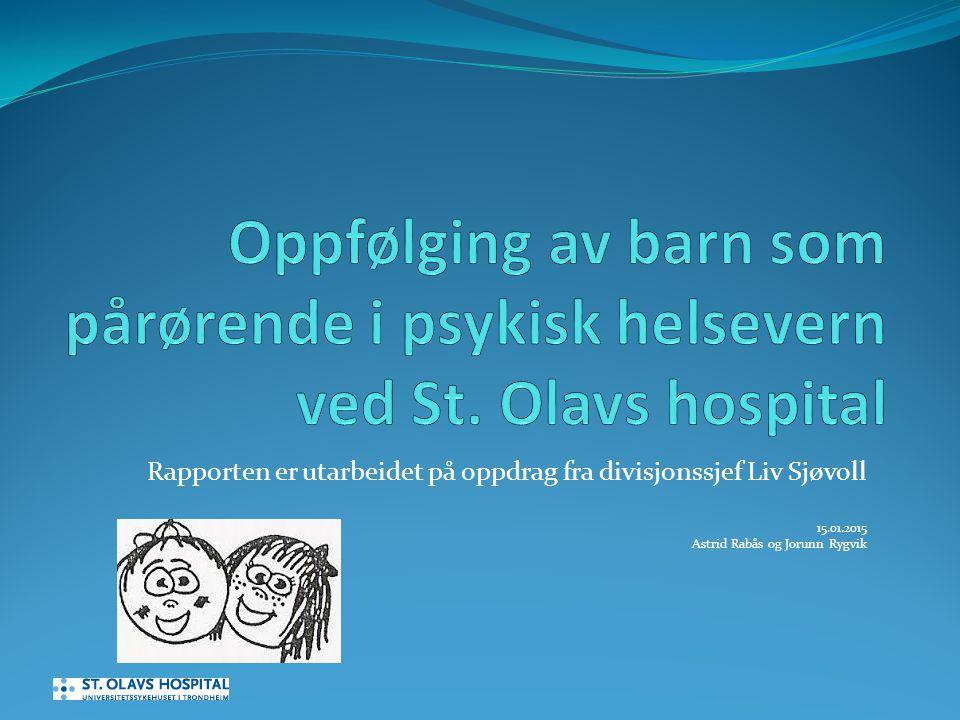 Rapporten er utarbeidet på oppdrag fra divisjonssjef Liv Sjøvoll 15.01.2015 Astrid Rabås og Jorunn Rygvik