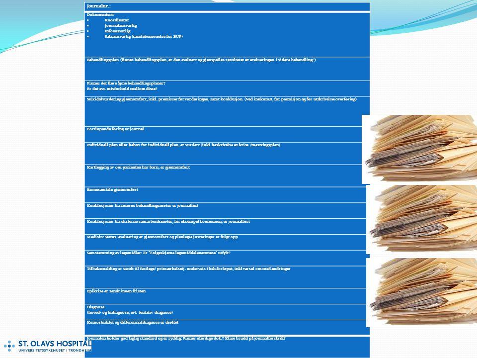 Journalnr.: Dokumentert:  Koordinator  Journalansvarlig  Infoansvarlig  Saksansvarlig (samlebenevnelse for BUP) Behandlingsplan (finnes behandlingsplan, er den evaluert og gjenspeiles resultatet av evalueringen i videre behandling?) Finnes det flere åpne behandlingsplaner.