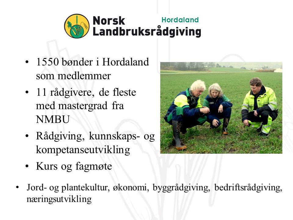 1550 bønder i Hordaland som medlemmer 11 rådgivere, de fleste med mastergrad fra NMBU Rådgiving, kunnskaps- og kompetanseutvikling Kurs og fagmøte Hordaland Jord- og plantekultur, økonomi, byggrådgiving, bedriftsrådgiving, næringsutvikling