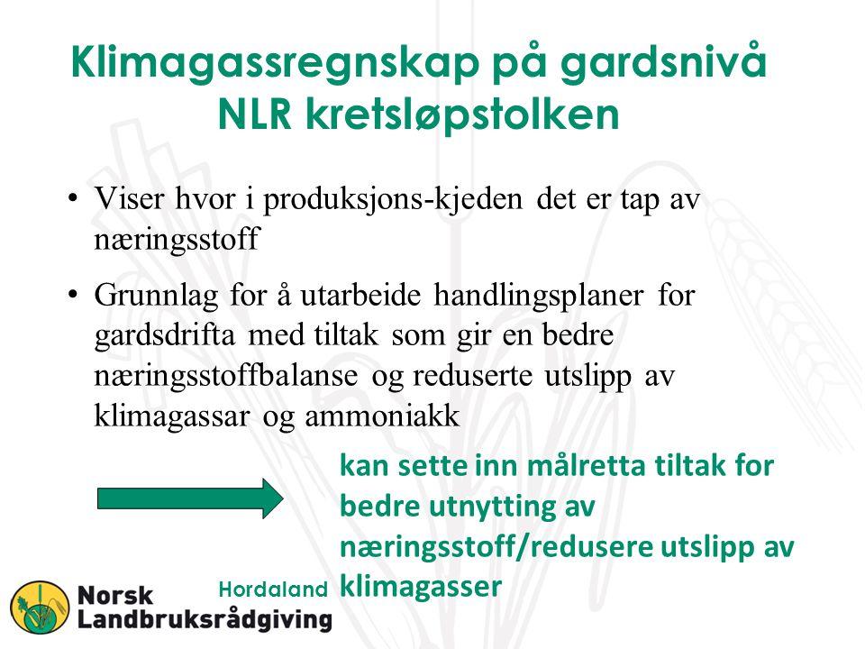 Nitrogen-overskudd N-overskuddet tapes til miljøet, blant annet som ammoniakk og lystgass.