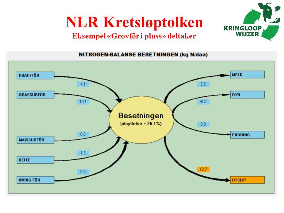 NLR Kretsløptolken Eksempel «Grovfôr i pluss» deltaker