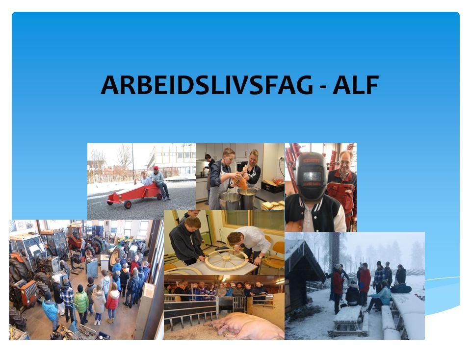 ARBEIDSLIVSFAG - ALF