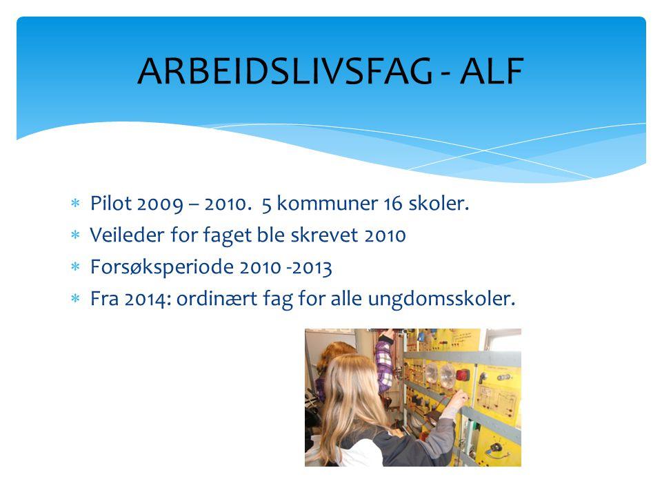  Pilot 2009 – 2010. 5 kommuner 16 skoler.  Veileder for faget ble skrevet 2010  Forsøksperiode 2010 -2013  Fra 2014: ordinært fag for alle ungdoms