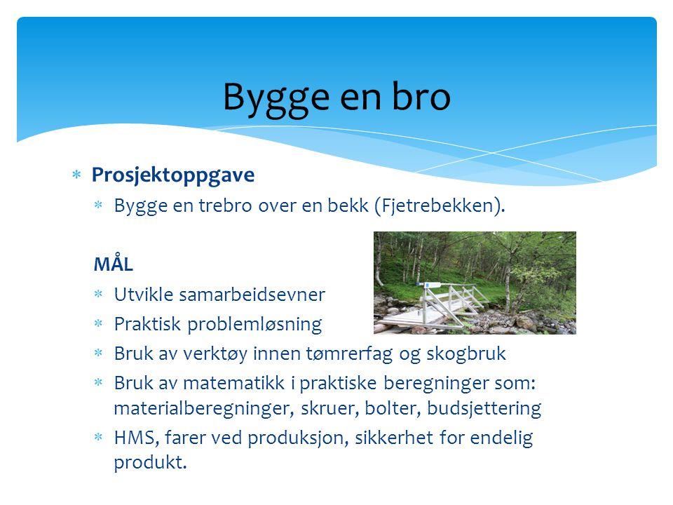  Prosjektoppgave  Bygge en trebro over en bekk (Fjetrebekken). MÅL  Utvikle samarbeidsevner  Praktisk problemløsning  Bruk av verktøy innen tømre