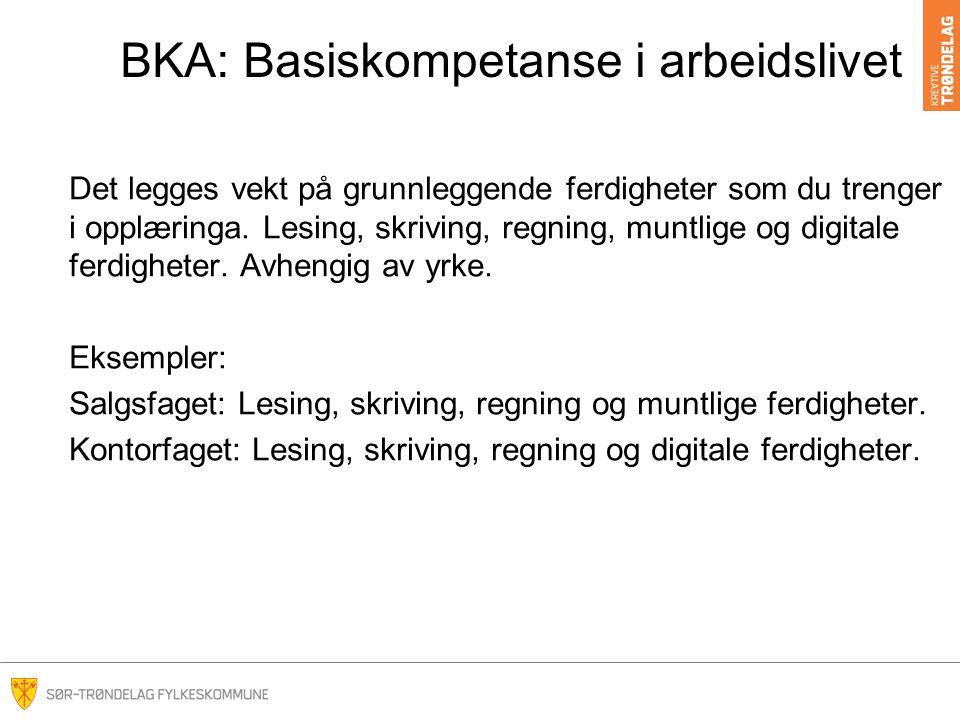 BKA: Basiskompetanse i arbeidslivet Det legges vekt på grunnleggende ferdigheter som du trenger i opplæringa.