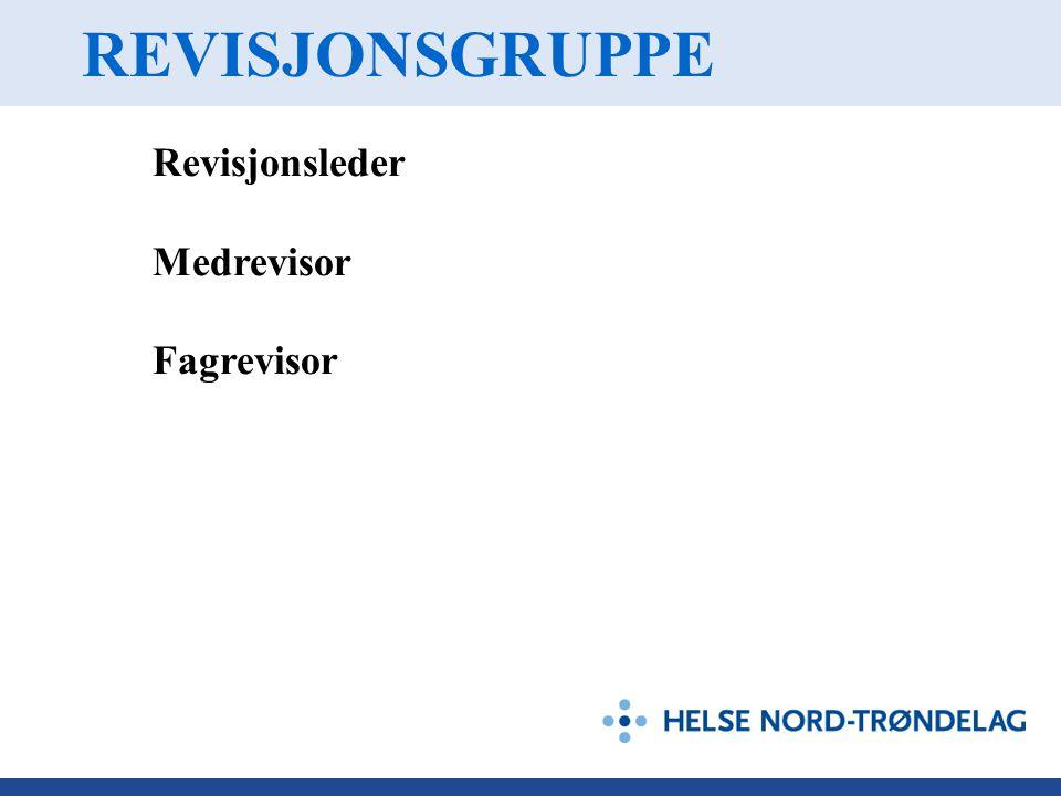 REVISJONSGRUPPE Revisjonsleder Medrevisor Fagrevisor