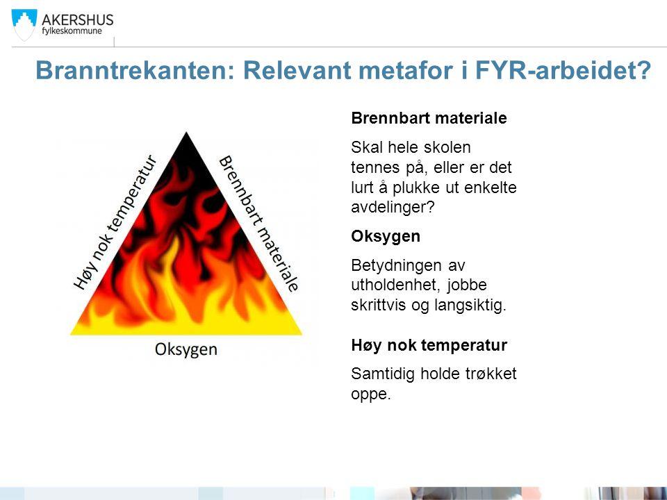 Branntrekanten: Relevant metafor i FYR-arbeidet? Brennbart materiale Skal hele skolen tennes på, eller er det lurt å plukke ut enkelte avdelinger? Oks