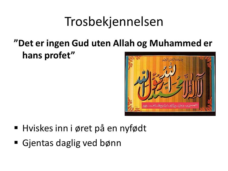 """Trosbekjennelsen """"Det er ingen Gud uten Allah og Muhammed er hans profet""""  Hviskes inn i øret på en nyfødt  Gjentas daglig ved bønn"""