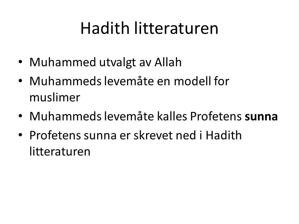 Hadith litteraturen Muhammed utvalgt av Allah Muhammeds levemåte en modell for muslimer Muhammeds levemåte kalles Profetens sunna Profetens sunna er s