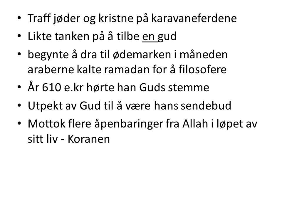 Muhammed taler til menneskemassen Slutte å tilbe gudebilder Ingen annen Gud enn Allah De rike skulle dele rikdommen sin med de fattige Blodhevn måtte avskaffes Måtte bli slutt på slåssing, bedrag og bruk av sterke drikkevarer